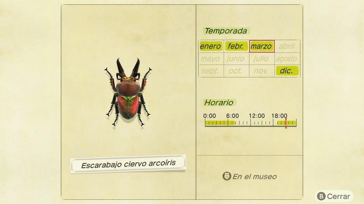 Animal Crossing New Horizons escarabajo bicho raro
